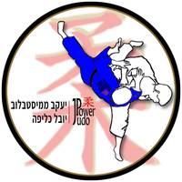 קידום-אתרים-judopower-לוגו