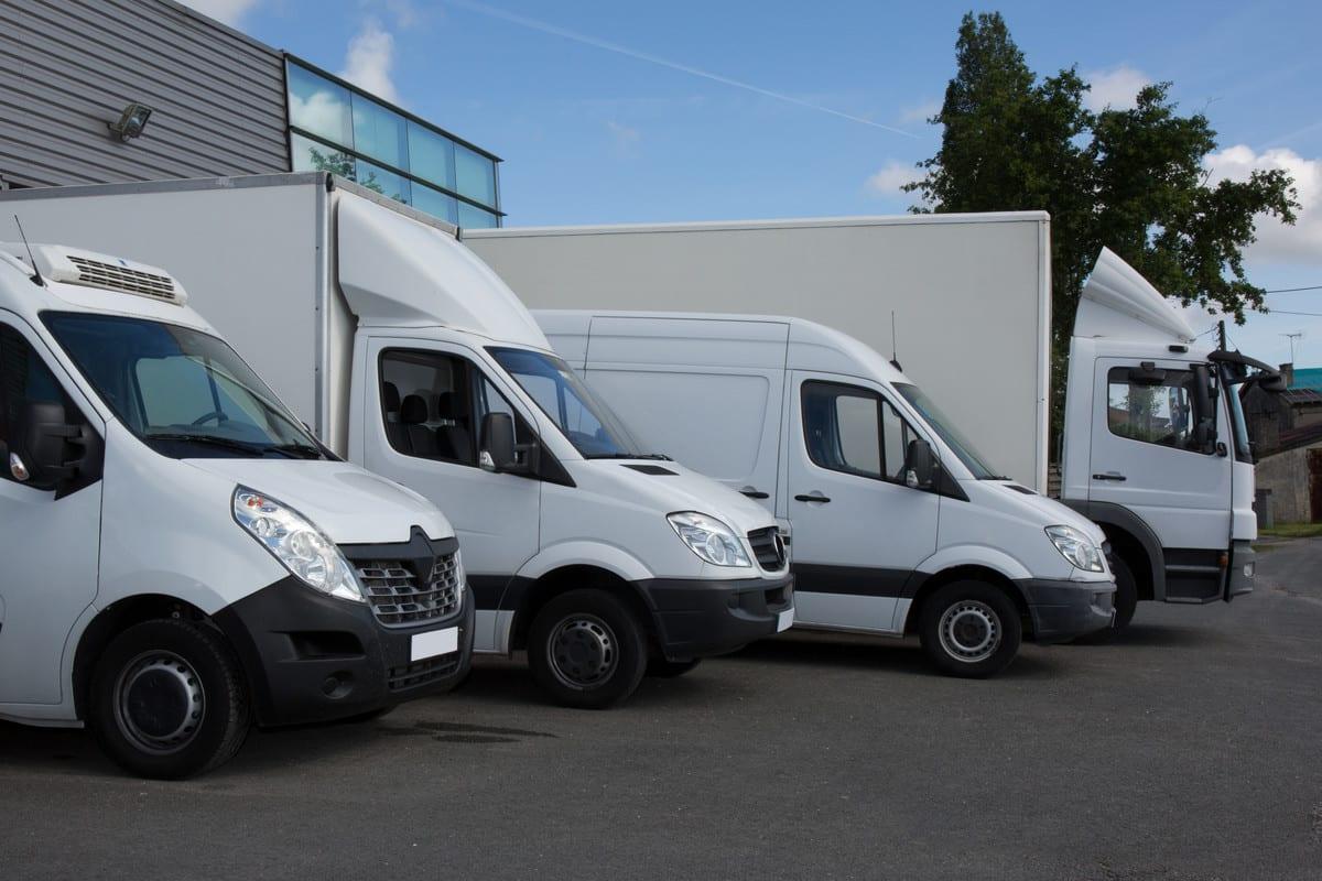 Vans and Wagon