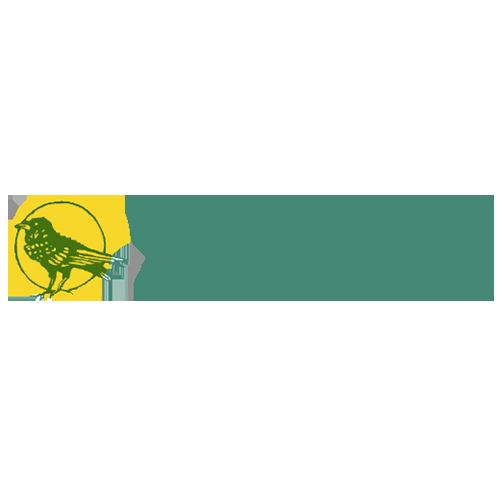 Rainow Primary School