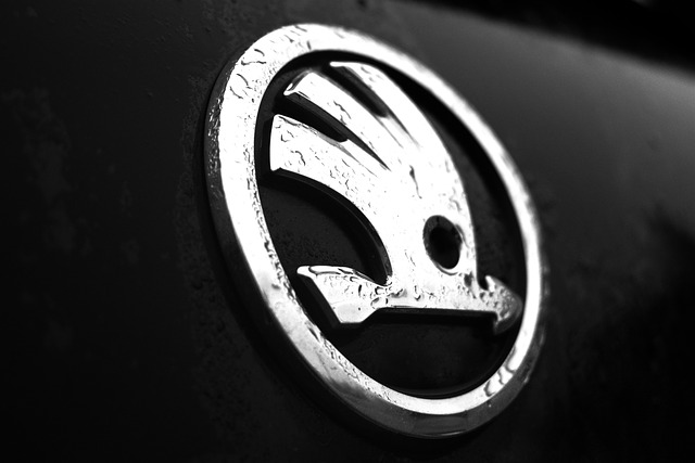 Skoda logo that could be on your company car if you get a Skoda car