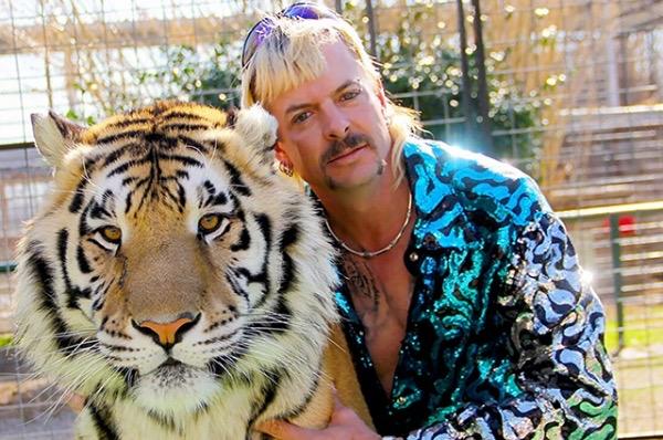 Сериал «Король тигров» бьет рекорды по просмотрам. Собрали мемы в Сети