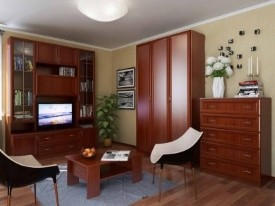 мебель в гостиную Волхова 6