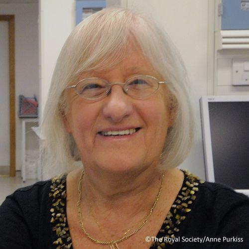 Professor Dame Valerie Beral