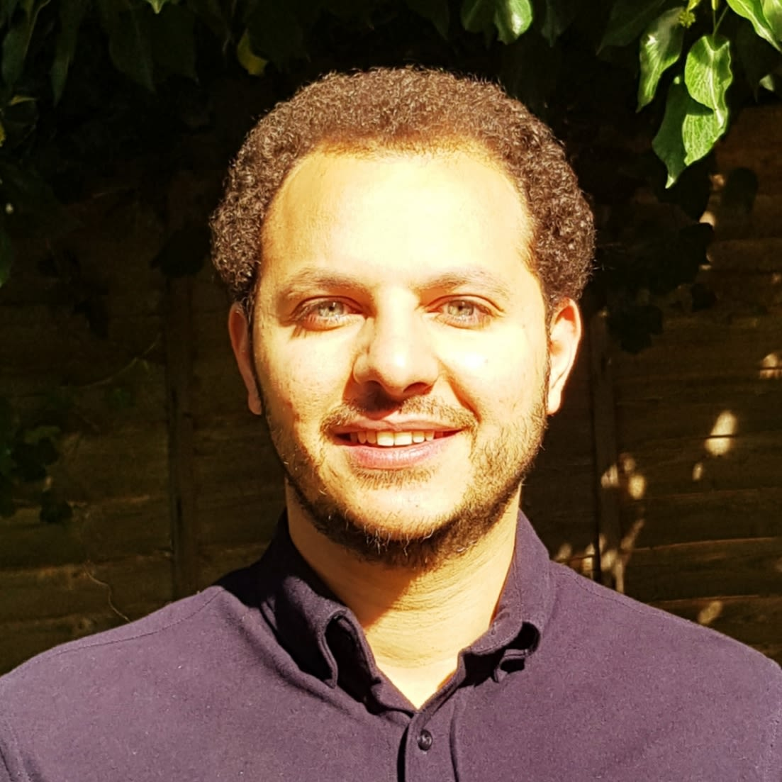 Dr Mohammed Zayed