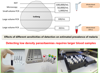 As we aim to eliminate malaria in GMS in year 2030, we therefore need to know first who are infected and where are they? We have developed an ultra sensitive qPCR that can detect down to (LOD) 20 parasite/ mL. This is 2000 time lower than conventional microscopy detection.