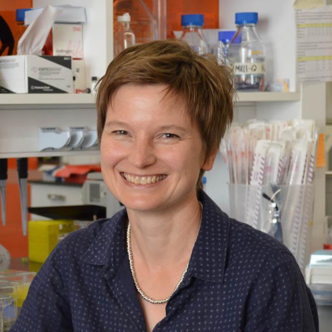 Dr. Ulrike Gruneberg