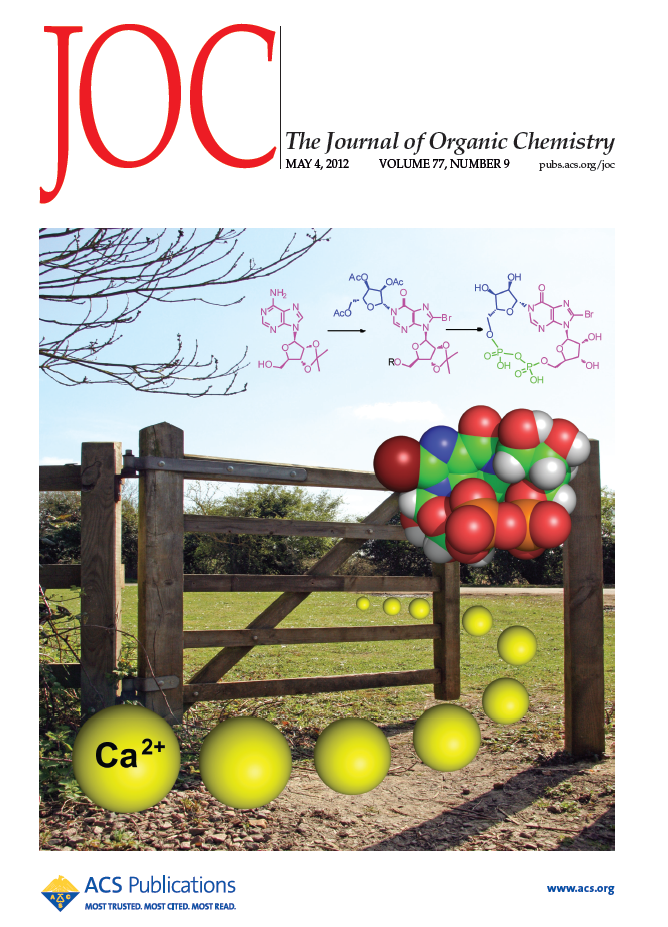 The first total synthesis of cIDPR depicted on the front cover of The Journal of Organic Chemistry - this stable, synthetic second messenger analogue releases calcium from intracellular stores.