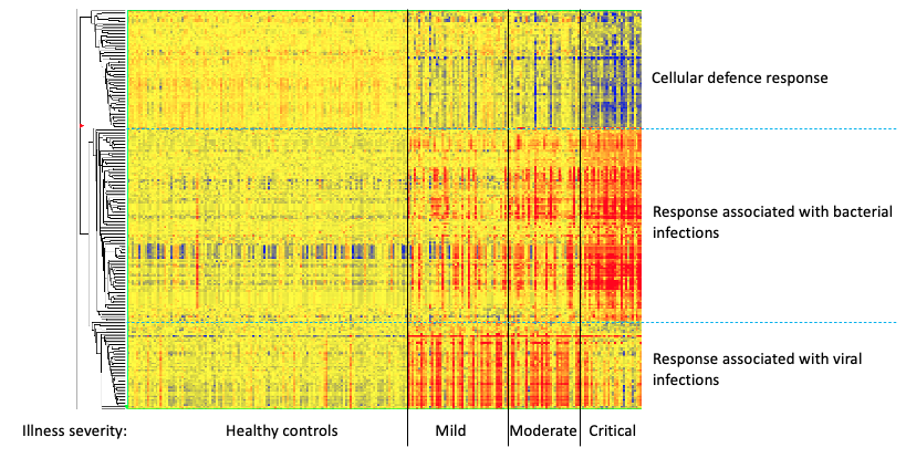 Investigating differences in host immune responses to understand why severities of illness differ. Shown here are 231 transcripts in blood from influenza patients