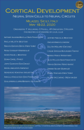 Cortical Development May 2020 poster.png