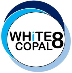 WHITE-8