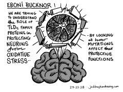 Eboni Bucknor
