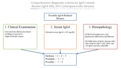 Comprehensive diagnostic criteria for IgG4-related disease (IgG4-RD), 2011