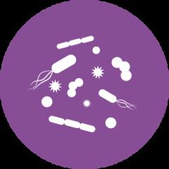 Gnotobiotics graphic