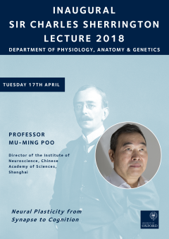 Decorative Sherrington lecture 2018 poster