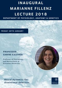 Decorative Fillenz Lecture 2018 Poster