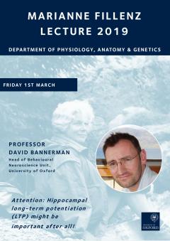 Decorative Fillenz Lecture 2019 Poster