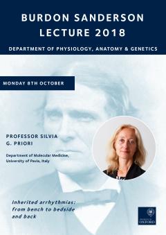 Decorative image of Burdon-Sanderson 2018 lecture poster