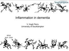 Inflammation in Dementia