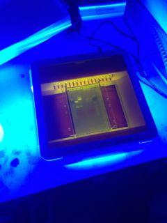 dnasequencesvisualisedwithuvtransiluminator2.jpeg