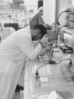 Gurdip Mann in lab, working on chagas vaccine development