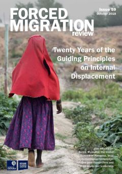 Twenty Years of the Guiding Principles on Internal Displacement