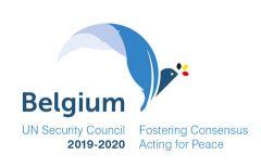Belgium UN Security Council