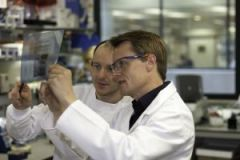 Mads Gyrd-Hansen and another researcher studying a Western blot X-ray film in the lab