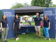 4 Ludwig Oxford Researchers standing in front of the stand at the Headington Festival