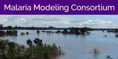 Malaria Modeling Consortium logo