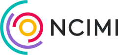 Logo for National Consortium of Intelligent Medical Imaging (NCIMI)
