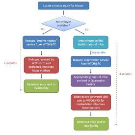 flow-diagram.jpg