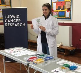 Virginia Schmid standing by the DNA bracelet making acitivity next to the Ludwig Cancer Research banner during a visit to a primary school.