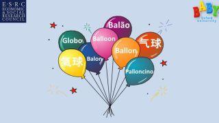 Infant Bilingual Lexicon