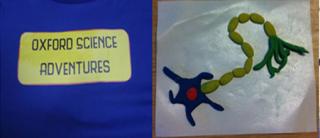 Half term activities oxford science adventures is back