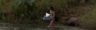 Malaria cambodia pbs jan19