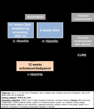 hepatitis c genotype 1a/1b or 4 mild disease (fibroscan)