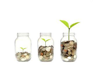 Seed fund image2.jpg