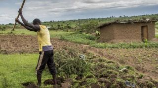Uganda's self-reliance strategy: what difference does it make?