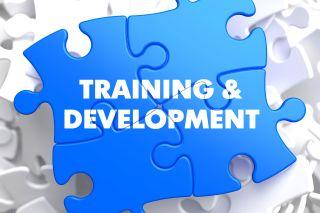 traininganddev.jpg