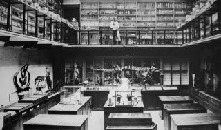 A series of boxed specimens and a fossil skeleton inside the Anatomy School