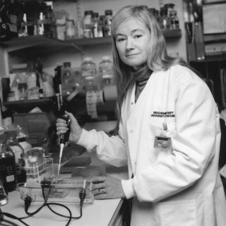 Kay Davies using a pipette in her lab