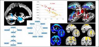 Translational image analysis group 3