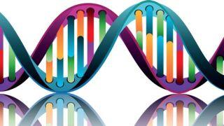 Epilepsy Genomics