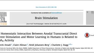 Published Paper: Brain Stimulation