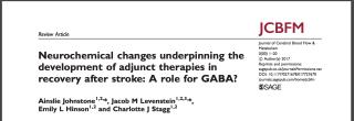 Published paper journal of cerebral blood flow and metabolism