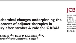 Published Paper: Journal of Cerebral Blood Flow and Metabolism