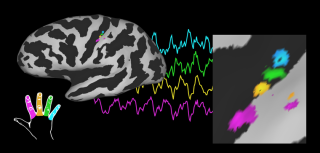 Published paper journal of neuroscience 1
