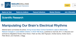 Magdas paper featured on neuronline