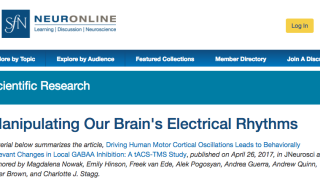 Magda's paper featured on Neuronline