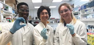 Four students were placed in our department as part of the In2Science programme this summer.